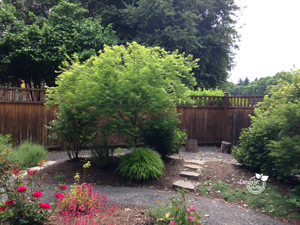 After Irvington landscape design.