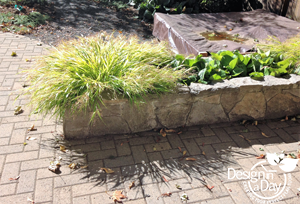 Locally sourced basalt mortared planters in Irvington landscape design.