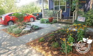 In between plants for Rose City residential front yard landscape design.
