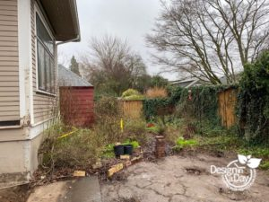Laurelhurst back yard remodel before new hardscape with patio and fence.