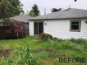 Before photo of garden design for mid century home in Roseway neighborhood portland oregon