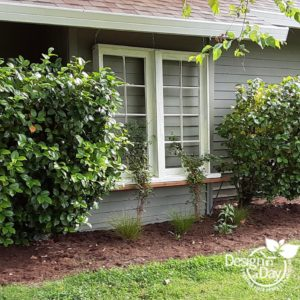 A DIY trellis for this Portland home supports a clematis.