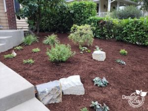 Hardscape landscaping helps retain soil next to steps in freshly planted Portland landscape
