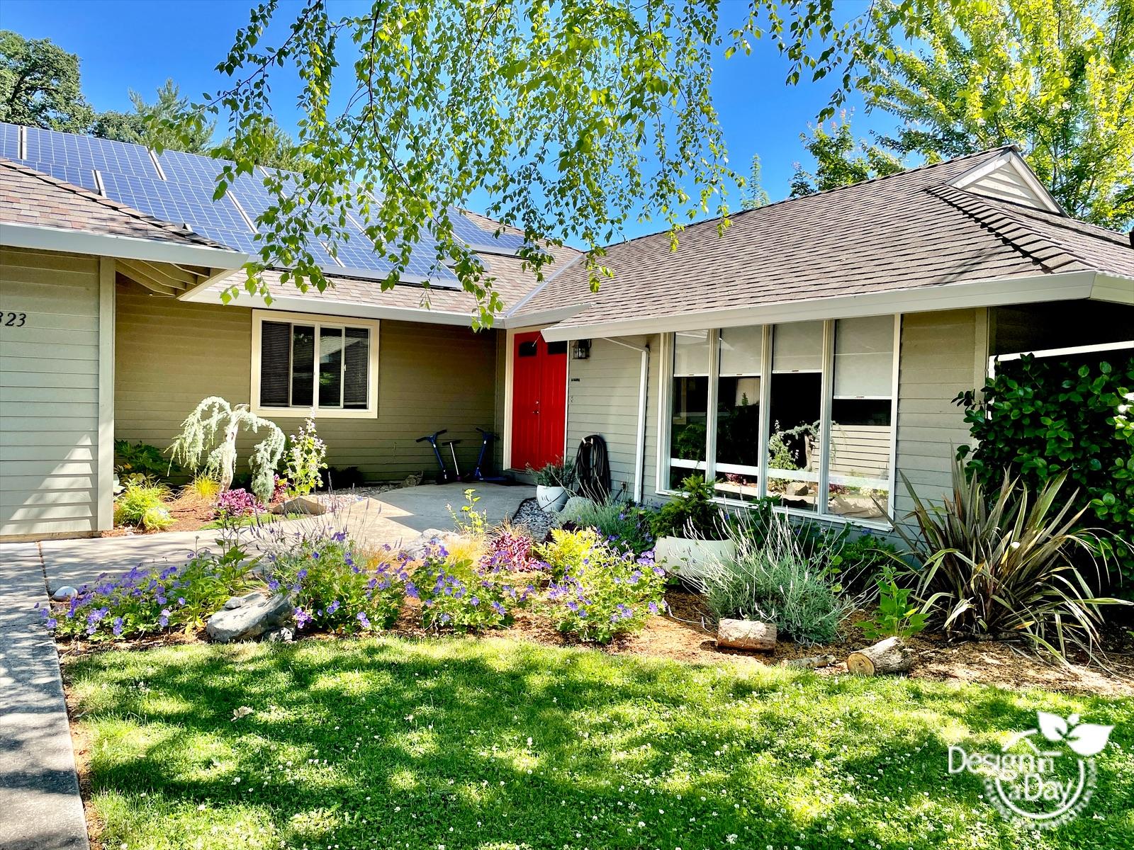 After landscape design photo shows summer plantings and color in front yard Portland Oregon