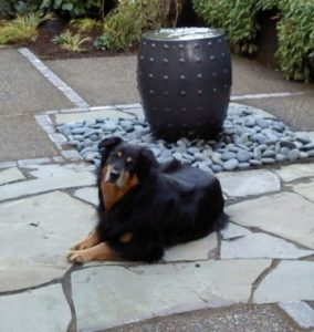 Landscape Design in a Day creates an echo chamber water feature or is it a dog landscaping water bowl?