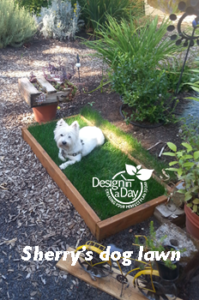 Dog friendly landscaping in Portland, Oregon