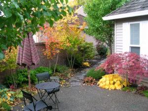 Courtyard Entry w Rain Garden