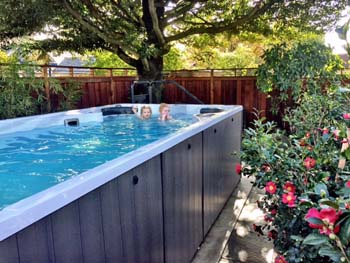 Swim spa in small backyard required low maintenance privacy landscaping.