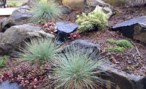 Boulders create softening with planting pockets.