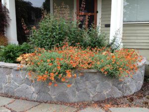 Full Season color at the front door