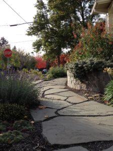 Susans Garden Path November 2012
