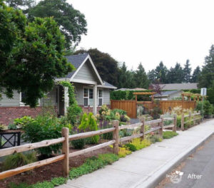 Edibles garden front yard in Milwaukie, Oregon