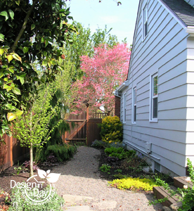 Residential Garden Design Portland, Oregon Woodstock neighborhood.