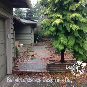 Before photo of entry landscape in West Hills neighborhood of Portland, Oregon