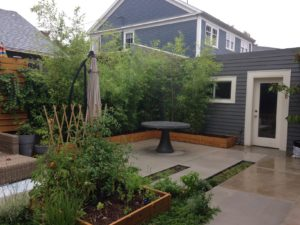 New backyard landscape designed with modern style.