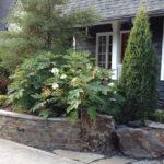 hendrickson planter 8 23 2012