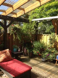 Perfect patio is pet friendly and lets cats be outside and safe.