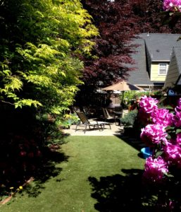 Client Mary's synthetic lawn landscaping for dogs.