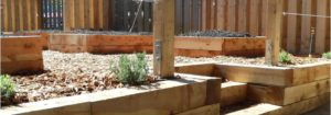 Raised veggie bed from juniper wood