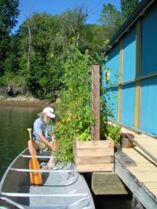 Portland floating house veggie garden