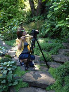 Rock Garden Video